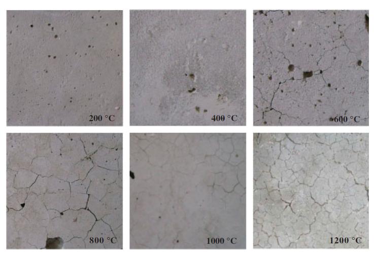 concrete specimens exposed to high temperatures
