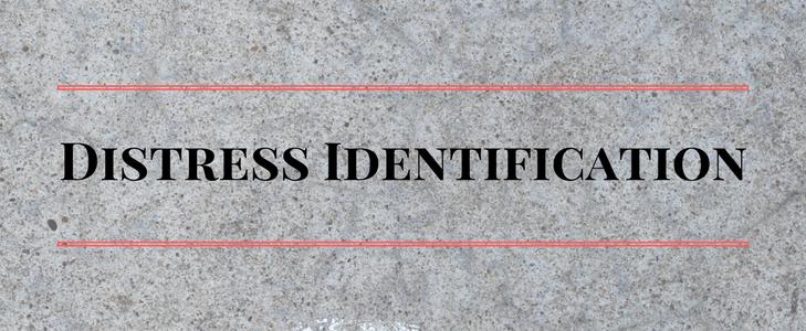 Concrete Distress Identification